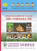 中國馬鈴薯